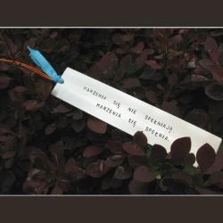 Zakładka Marzenia się nie spełniają. Marzenia się - Zakładki do książek - Akcesoria